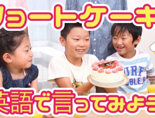 【小学生向け】「ショートケーキ」を英語で言うと?~英語で言ってみようクイズ②~