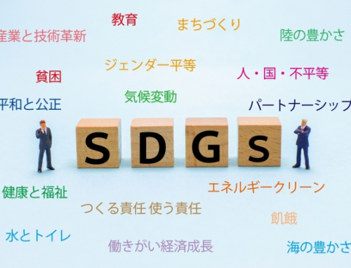 【SDGsって何?】