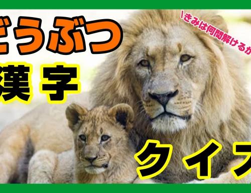 【小学生向け!】動物漢字クイズ~君は何問解けるかな?~