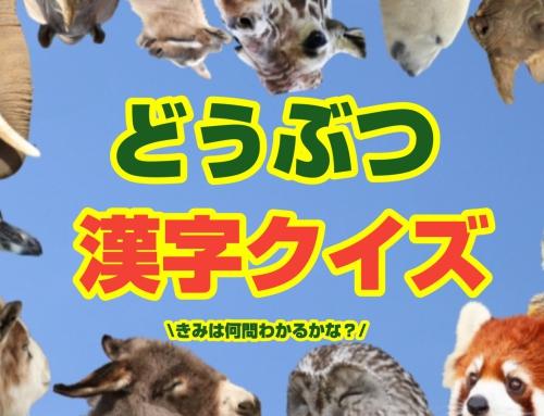 【小学生向け!】動物漢字クイズ パート2~君は何問解けるかな?~