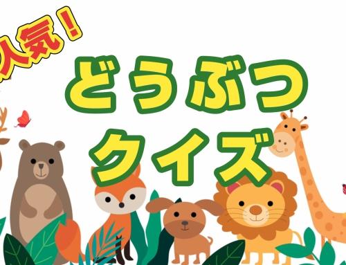 大人気!動物クイズ~Animal Quiz~
